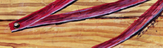 Ribbon and Wood grain - Oil painting